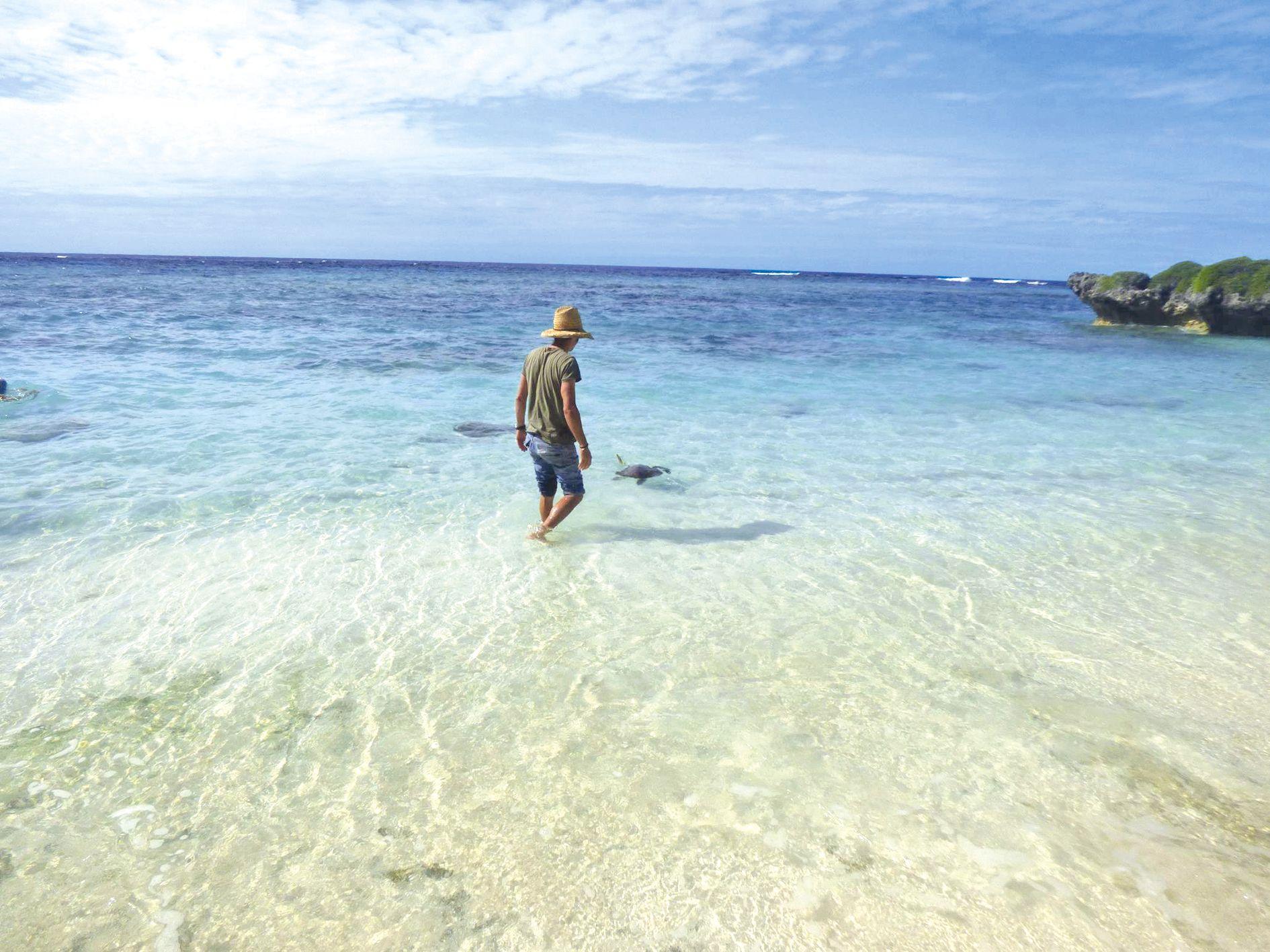 Antoine Barnaud, le vétérinaire de la PIL, a procédé au  lâcher de la tortue, qui a aussitôt disparu sous les eaux.