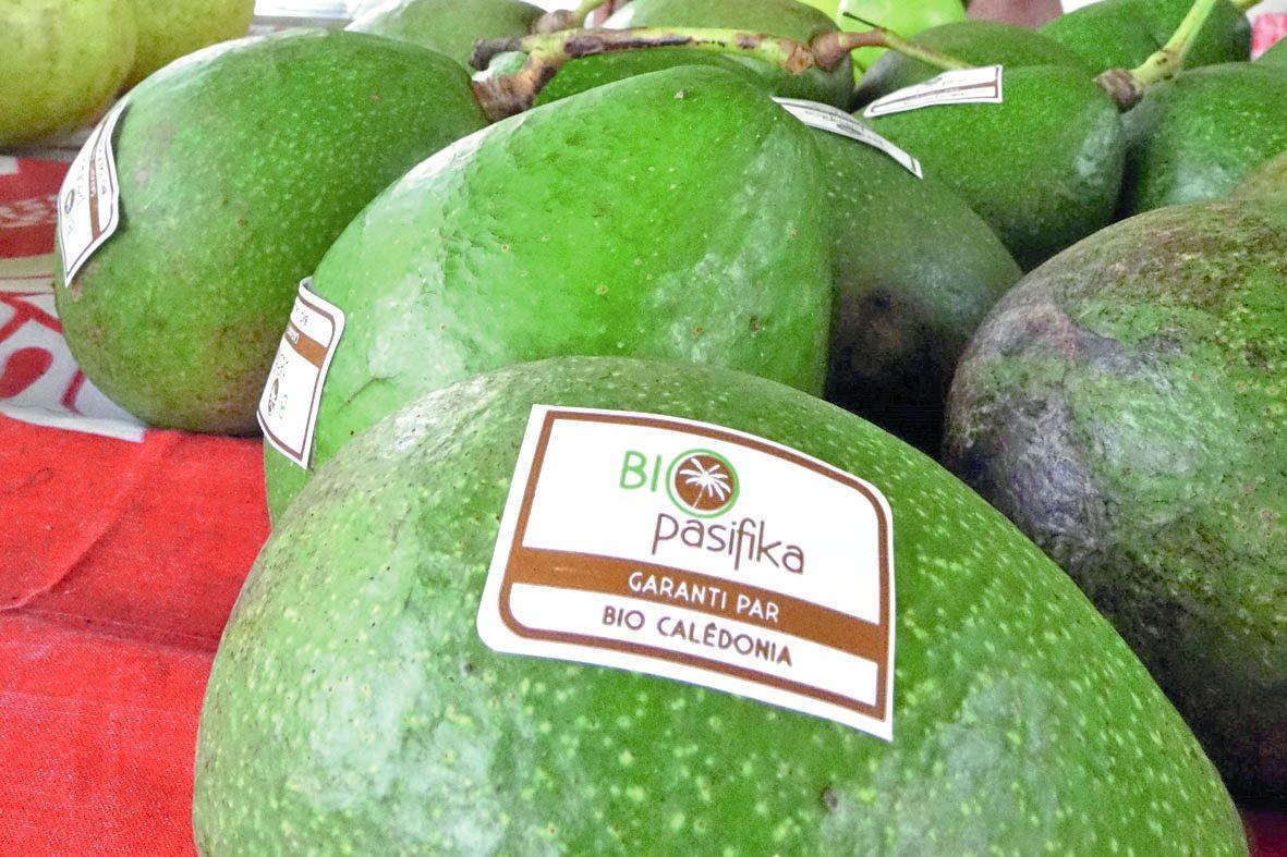 Les producteurs bio de Maré sont certifiés par l'organisme Bio Calédonia, partenaire du marché. « C'est une façon d'accompagner les producteurs pour la promotion du bio », a précisé Frédéric Pallet, animateur. Leurs produits bénéficient du label Bio Pacif