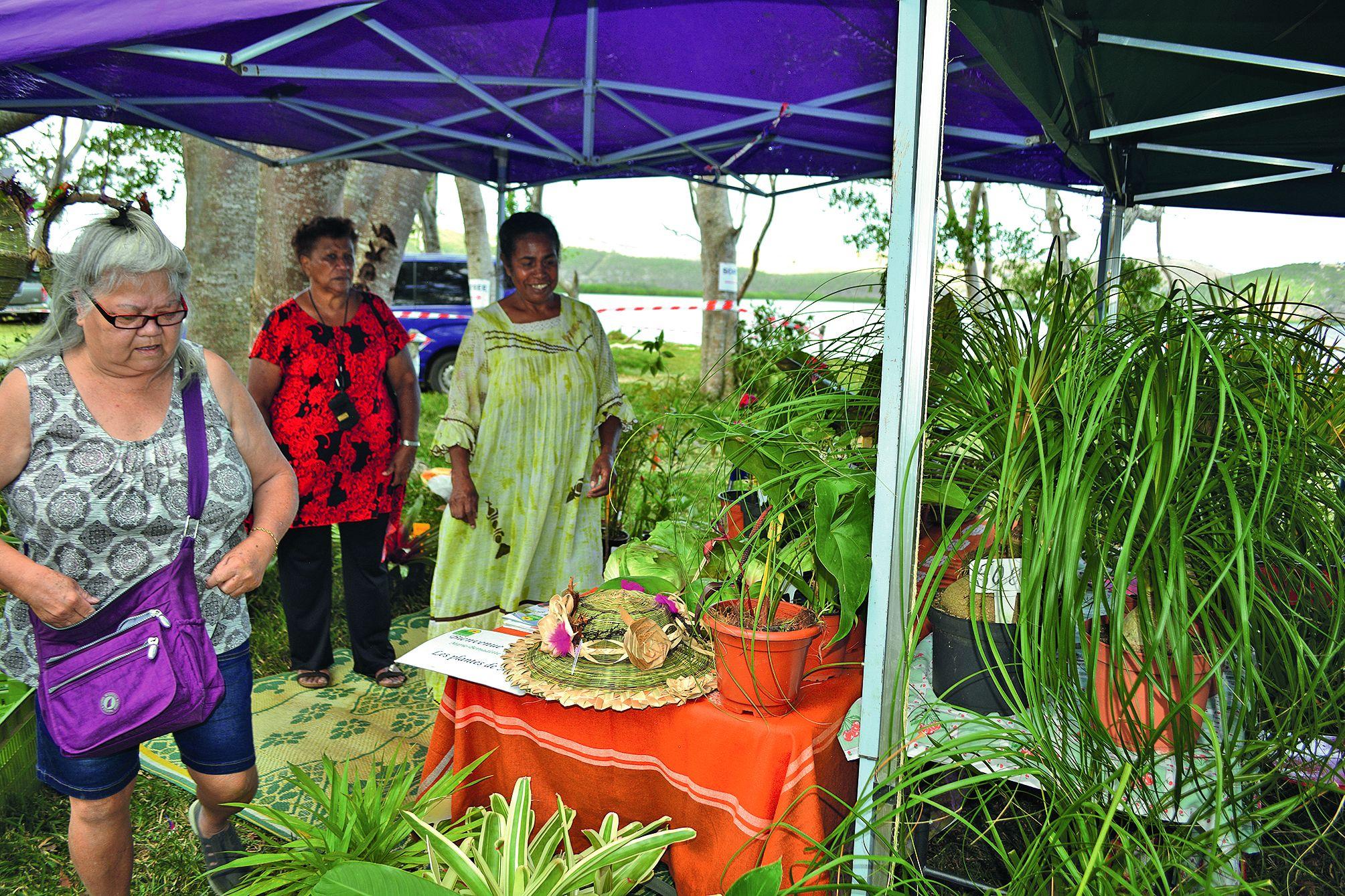 Plantes vertes et fleurs  ont, elles aussi, une grande place dans ce marché, ce  qui n'a pas été pour déplaire aux amoureux de la nature  en quête de nouveautés dans ce domaine.