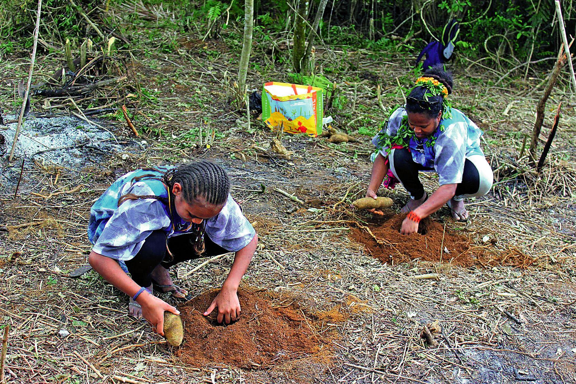 Les enfants ont découvert pour certains la réalisation des différentes étapes d'un champ d'ignames.