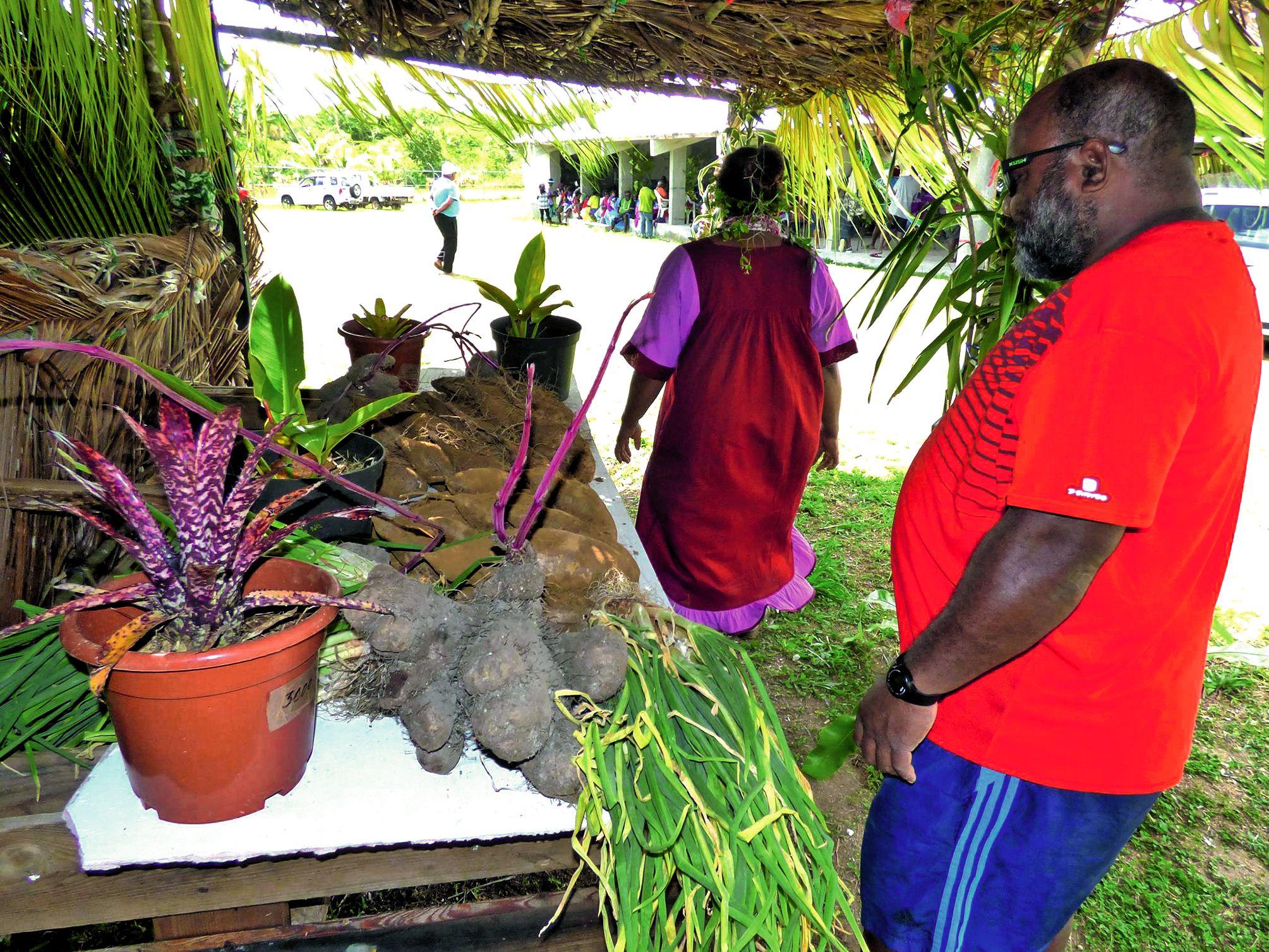 Dans la trentaine de stands, les producteurs locaux sont venus exposer leurs fruits et légumes afin d'apporter un peu plus de couleurs et de senteurs et surtout vendre leur production, notamment les wael, des ignames tardives à chair blanche.