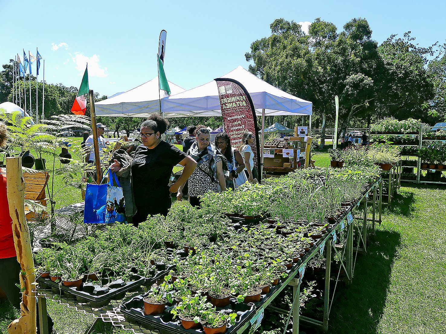 Plantes aromatiques, ornementales, semis, tubercules, bulbes, pour les terrasses, les balcons ou pour les jardins plus vastes, un large éventail de plantes a été proposé.