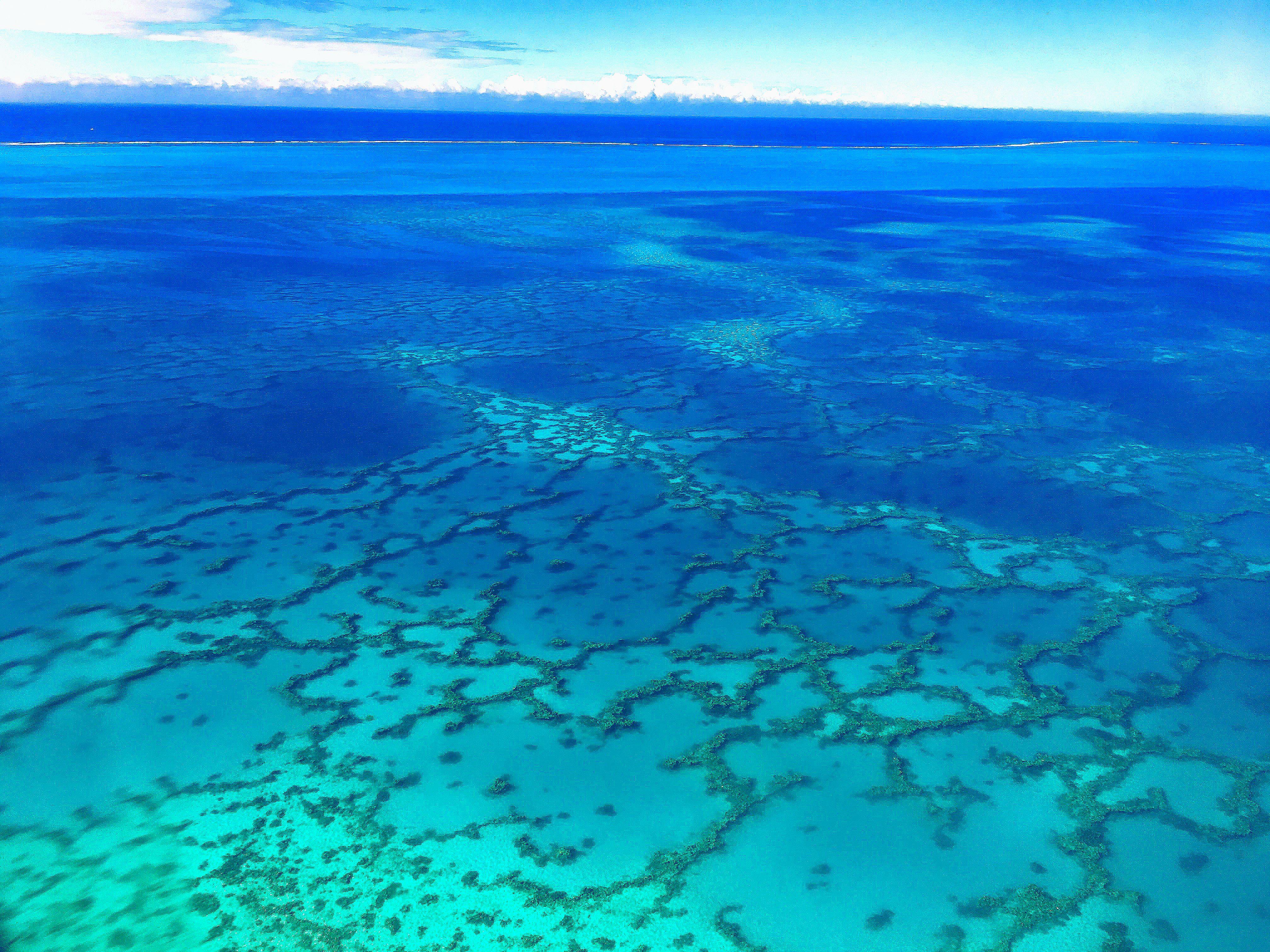 Les images et les vidéos permettront de valoriser la biodiversité du lagon. Photo A.T.