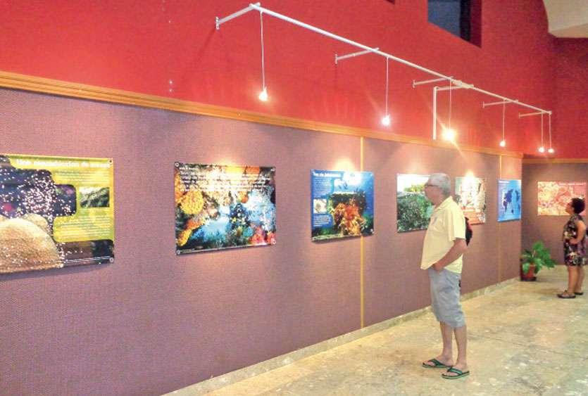 L'exposition est visible toute la journée sauf les 25, 26 et 27 mars. L'entrée est libre. Photo E.J.