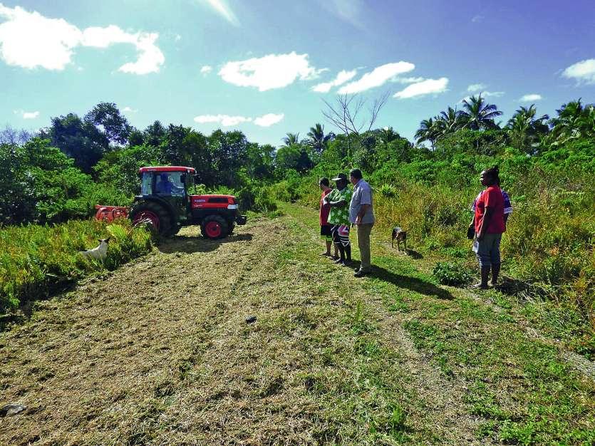 L'atelier sur la préparation du sol a été l'occasion d'une démonstration d'un tracteur équipé d\'une charrue.Photos M.G.