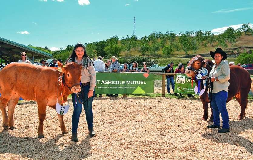 Comme chaque année, l'UPRA Bovine a organisé le concours de bovin. Nera, une femelle Limousine de 13 mois de l'élevage SCIR  Le Gabe, et Murphy, un mâle de race Droughtmaster de 22 mois de l'élevage de Bernard Darras, ont été sacrés respectivement super c