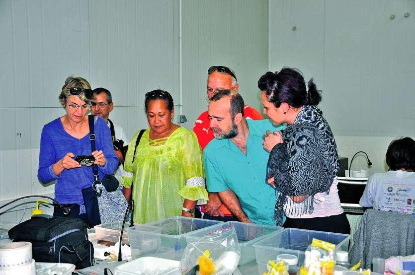 Les représentants des partenaires de l'expédition ont visité le site occupé par les scientifiques  de l'expédition « La Planète revisitée en Nouvelle-Calédonie ».Photo I.C.