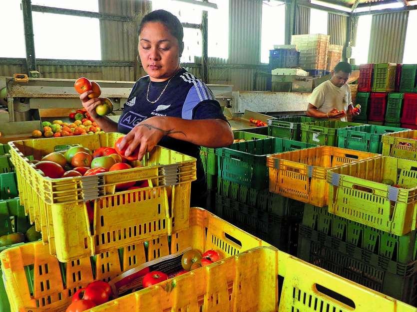 Ce stand du marché de la Moselle, à Nouméa, propose également des fruits et légumes à différents prix selon la catégorie. Photo Anthony Tejero