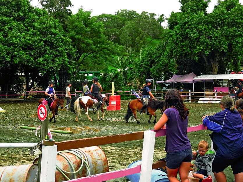 Chaque structure a présenté des ateliers variés liés au cheval ou au poney. Parmi les activités les plus communes, il y a eu le tressage, le pansage, mais aussi, bien sûr, des balades à poney. Le public était varié. Beaucoup d'enfants en bas âge sont venu