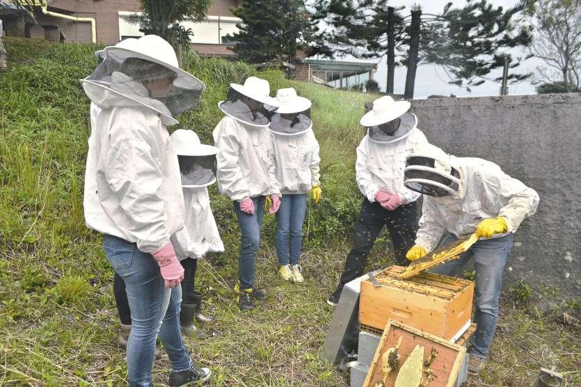 Samedi, à l'Auberge du Mont-Koghi, les parrains ont découvert le fonctionnement d'une ruche et les différentes pratiques de l'apiculteur.Photo A.P