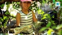 Calédoclean nettoie la mangrove de Tina-sur-Mer
