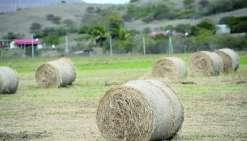 1,7milliard de plus contre les risques agricoles