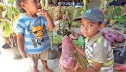 Hnathalo va célébrer la patate douce ce week-end