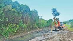 Premiers coups de pelle  dans la mangrove de Boulari