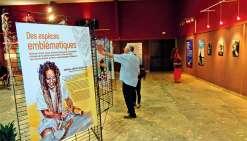 Le public a découvert l'exposition lors du vernissage. Photo E.J.