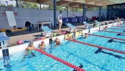 Des bassins du Caillou aux piscines de l'élite