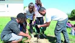 Le lycée cultive des kaoris, terreau de l'apprentissage