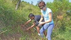 La CPS plante des arbres pour compenser ses voyages