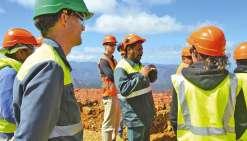 Un gisement de curieux  sur le site minier de Népoui