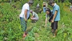 La permaculture veut convaincre