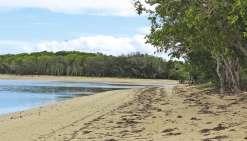 Après le déplacement hors du lagon des requins, la plage avait rouvert le 1er juillet. Des mesures avaient été prises pour rassurer et assurer la sécurité des baigneurs.