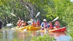 Des activités nature pour les jeunes