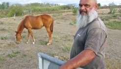Quinze ans de jeux équestres fêtés au ranch du Pont-Blanc