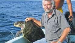Un plan d'action pour les tortues