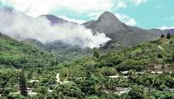 Un incendie fait rage près du Pic Malaoui