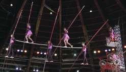Marseille fait son cirque