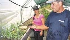 Une petite exploitation  agricole familiale qui pousse