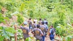 Des élèves de Bourail se plongent dans le monde de la permaculture