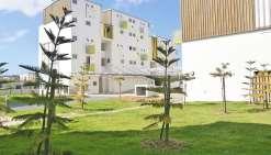 La province Sud lance près de 900 logements sociaux