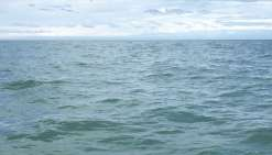 Un pêcheur survit à  56 jours de dérive en mer