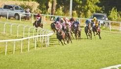 Premières courses samedi à Bourail