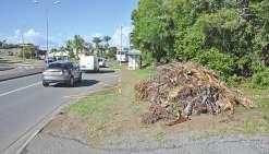 Davantage de déchets verts que prévu sur les trottoirs