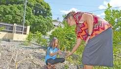 Cultiver les bons gestes contre la dengue