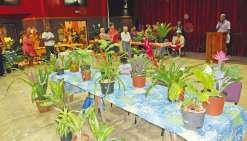 Les Floralies de retour au centre socioculturel