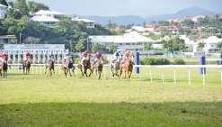 Les chevaux font escale à Henry-Milliard