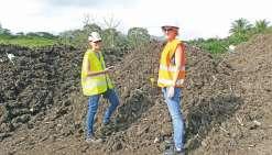 Un compost à base de boues de Step et de déchets verts