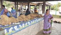Un marché de tubercules à Tadine