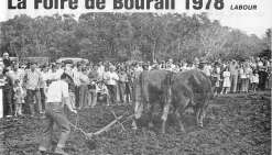 Bourail, 40 ans de Foire  en souvenirs et en images