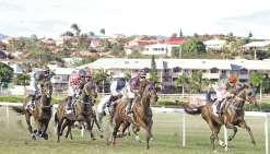 Les chevaux sont de retour à Nouméa