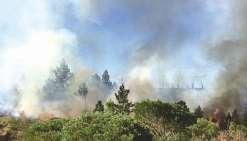 Des incendies à Kunié, Ponérihouen et Poum