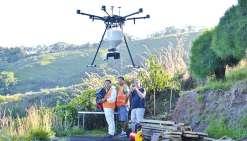 Un drone pour tuer les fourmis de feu