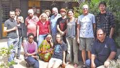 Les espèces des Oxera passées au peigne fin