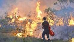 La saison des feux s'annonce déjà très périlleuse