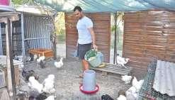 Emile Martin, jeune aviculteur aux multiples casquettes