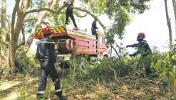 Les pompiers dans le feu de l'action