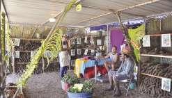 13 500 personnes pour les 25 ans de la Foire agricole de Koumac